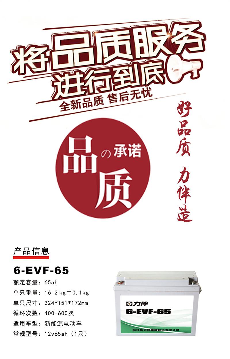 6-EVF-65.jpg
