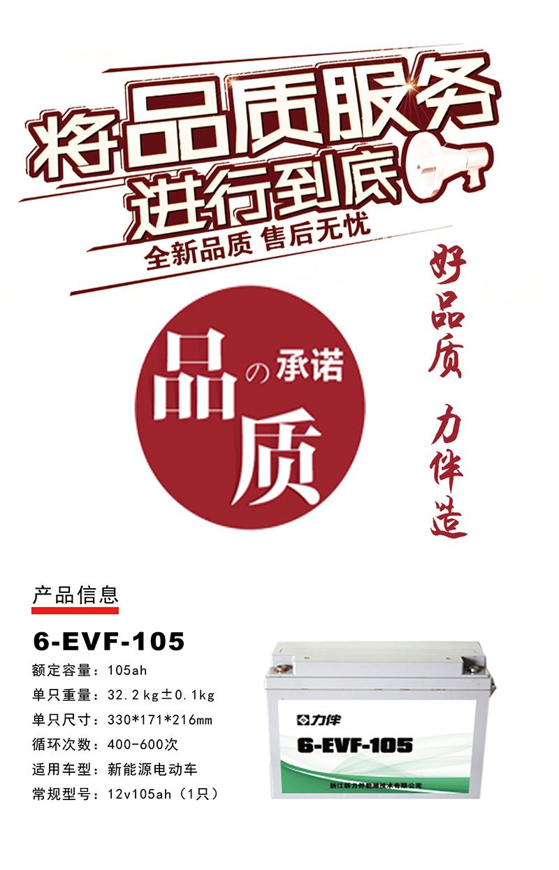6-EVF-105.jpg