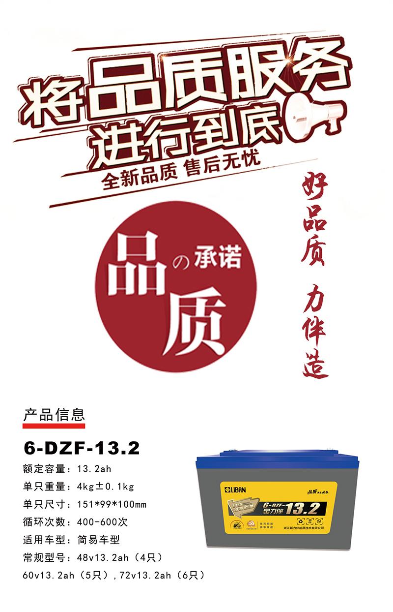 6-DZF-13.2.jpg