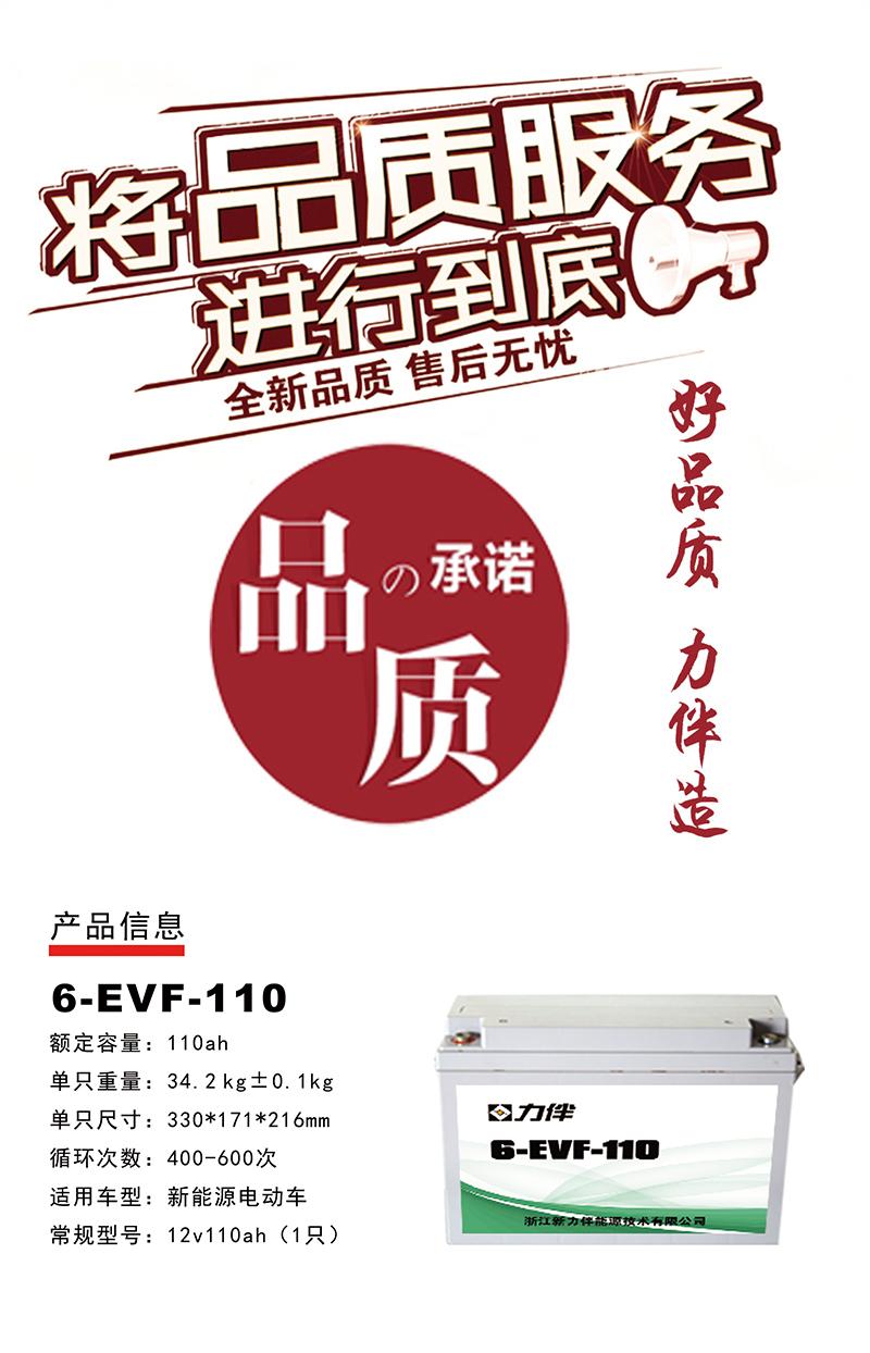 6-EVF-110.jpg