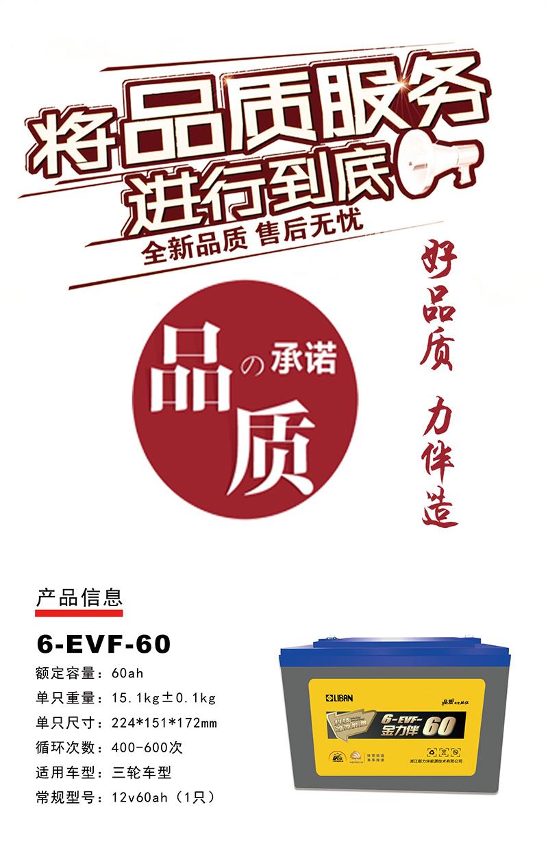 6-EVF-60.jpg