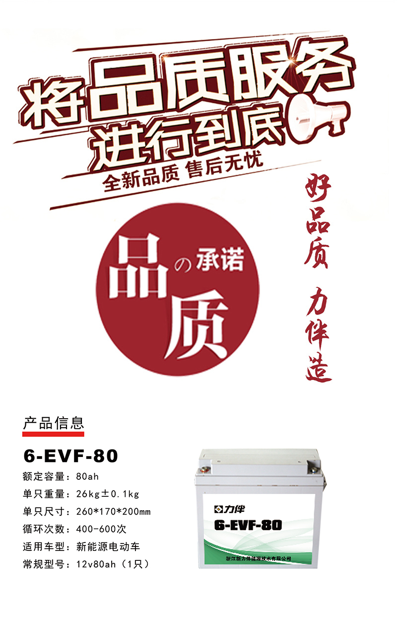 6-EVF-80.jpg